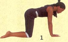 bidalasana cat stretch pose technique of practicing